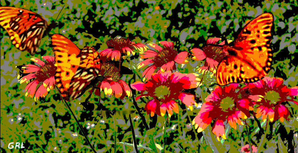 Butterflies And Wildflowers Florida Contemporary Digital Art. Paintings and prints, landscapes/seascapes, boats, sea and shore, abstracts, nudes, female nudes... Original fine art work by G. Linsenmayer.