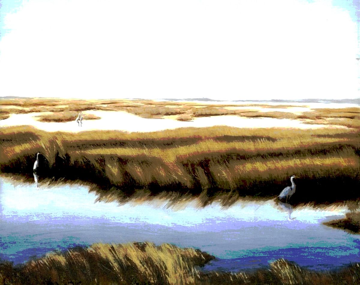 Gulf Coast Florida Marshes I. Free downloads, wallpaper, ‬‎GrlFineArt. Fine art work, nudes, figurative paintings. View here, art decor ‪‎fineart figures ‪‎painting‬ ‪‎painting‬s prints, landscapes, scenes. ...an original digital print based on my oil painting of a marsh on the Gulf Coast of Florida.