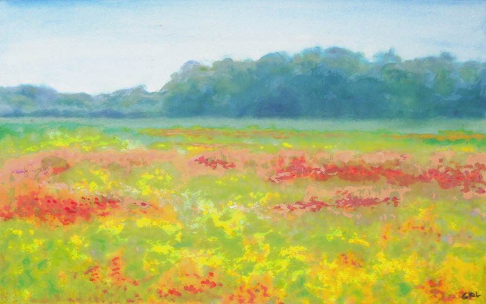 North Carolina Wildflowers Original Multimedia Painting. $300, 15.3x9.5 inches, $20 to $30, medium-size prints, free downloads. An original multimedia acrylic/oil painting, painted from a field I saw while going to visit my daughter in Emerald Isle, North Carolina. Multimedia classical traditional modern acrylic oil ‪‎painting‬s. ‬‎GrlFineArt ‪‎art ‪‎fineart ‪‎painting, room decor, ‪‎painting‬s, prints, landscapes, seascapes, boats, figures, nudes, figurative, flowers, stillife, digitalabstracts