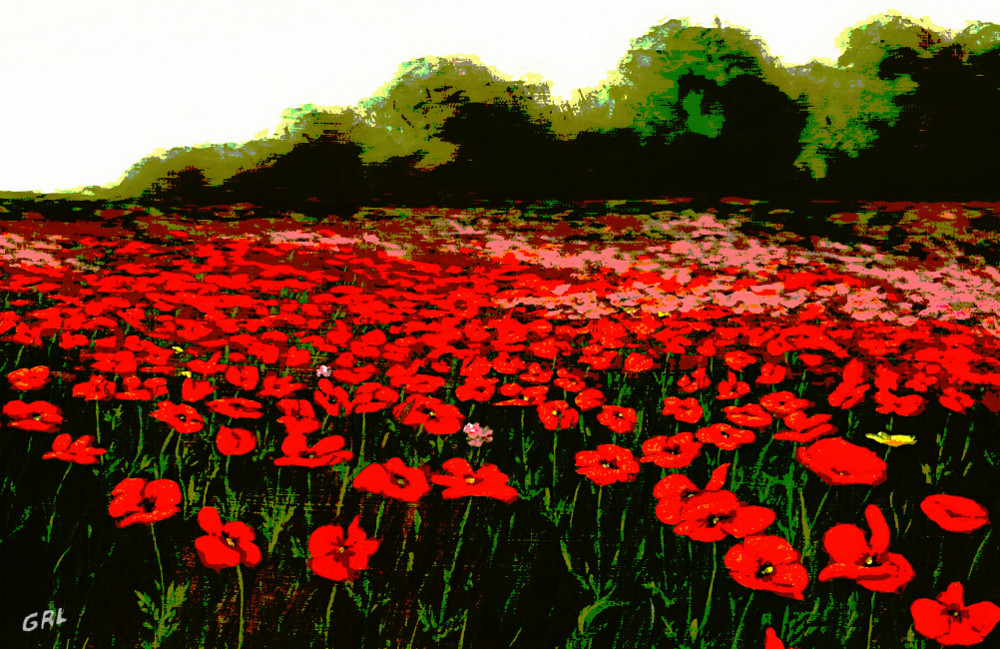 Red                               Poppies Landscapes Flowers Emerald Isle                               Multimedia Fine Art - original fine art                               work by G. Linsenmayer